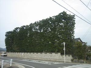 IMG_0068-1.JPG